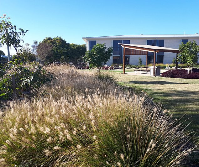 Landscape architecture services nsw